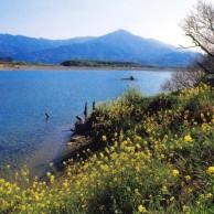07 徳島県 吉野川