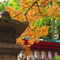 01 京都八坂神社