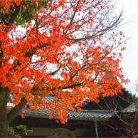 03 京都八坂神社