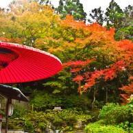 09 円山公園